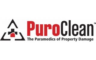 Puro Clean Logo